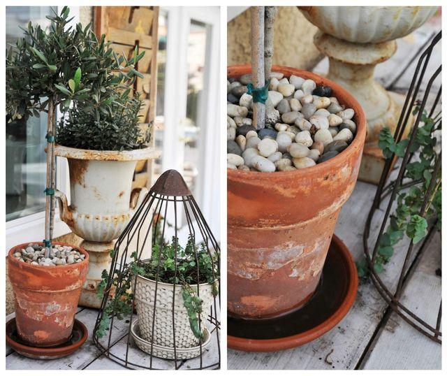 Gardencoll2